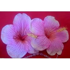 """Набор цветы """"Гибискус""""  №6249"""