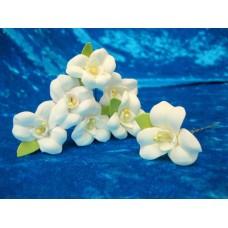 Шпильки Орхидеи айвори d:3,5см  латекс Цена: за 1 штуку №1778.30